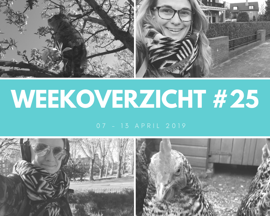 Weekoverzicht #25: de week van sales funnels en ontspannende kippen.