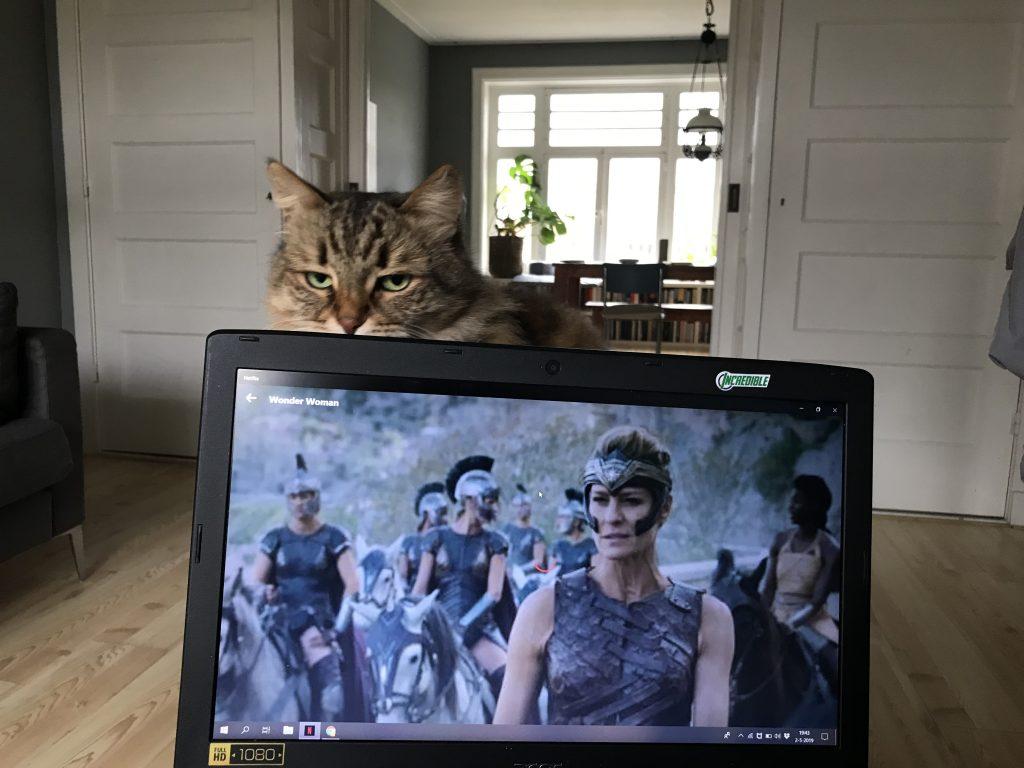 wonder woman kijken